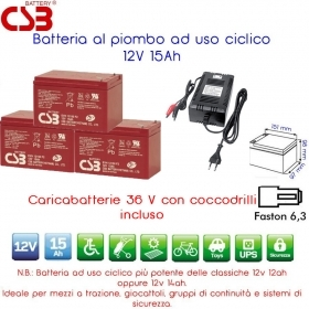 KIT 36V 03 Batterie al piombo